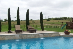 Modern Pool 81